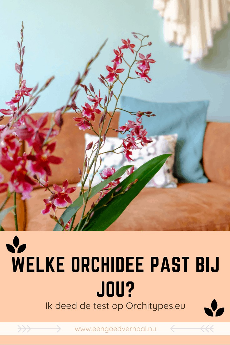 orchideeen test orchitypes