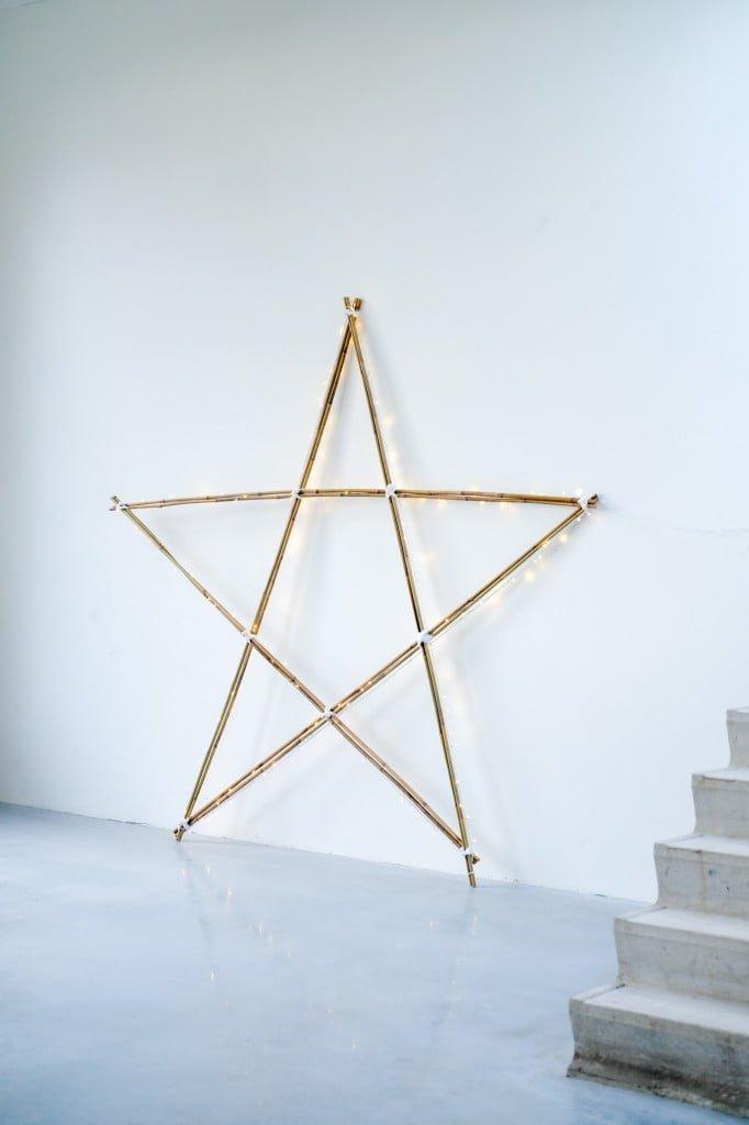 grote ster takken