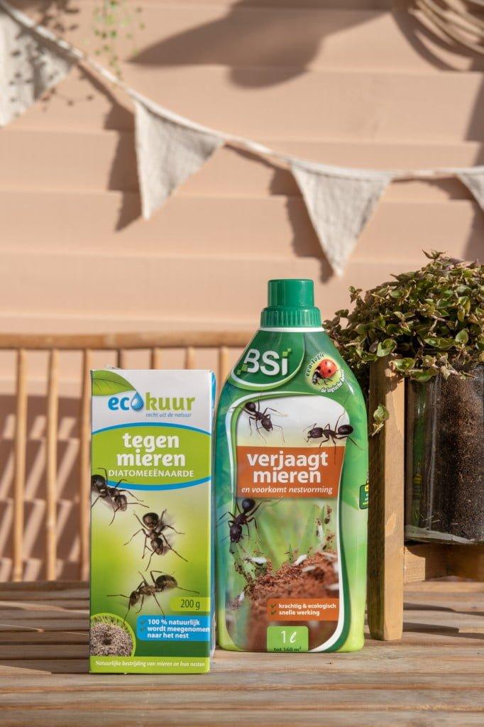 natuurlijk mieren bestrijden