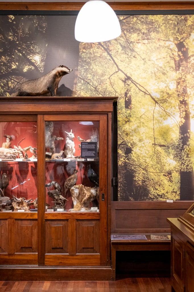 museum voor kinderen denekamp enschede