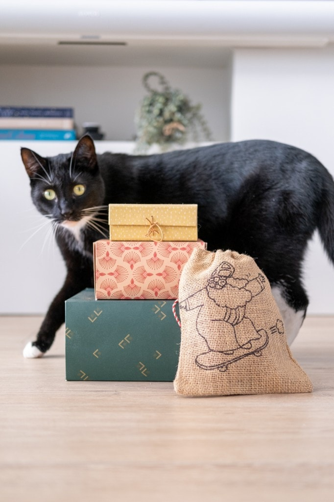 cadeautips katten