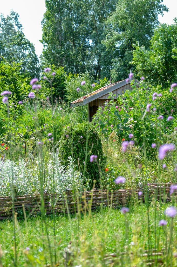 tuin met veel biodiversiteit