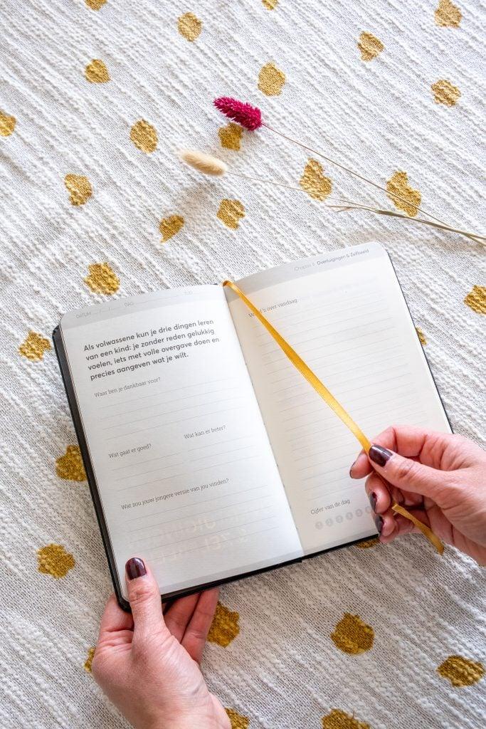 bladzijde uit grattitude diary