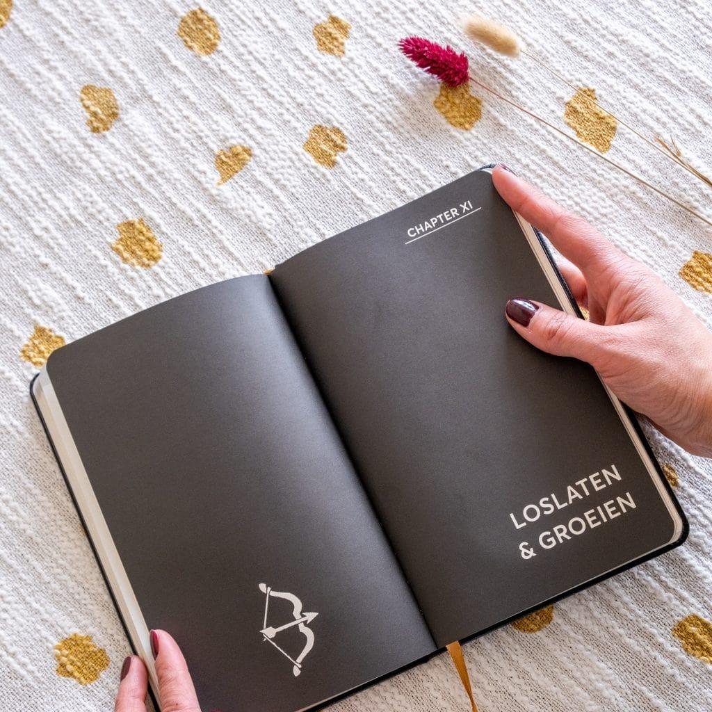 dankbaarheidsdagboek bijhouden vertellis chapters