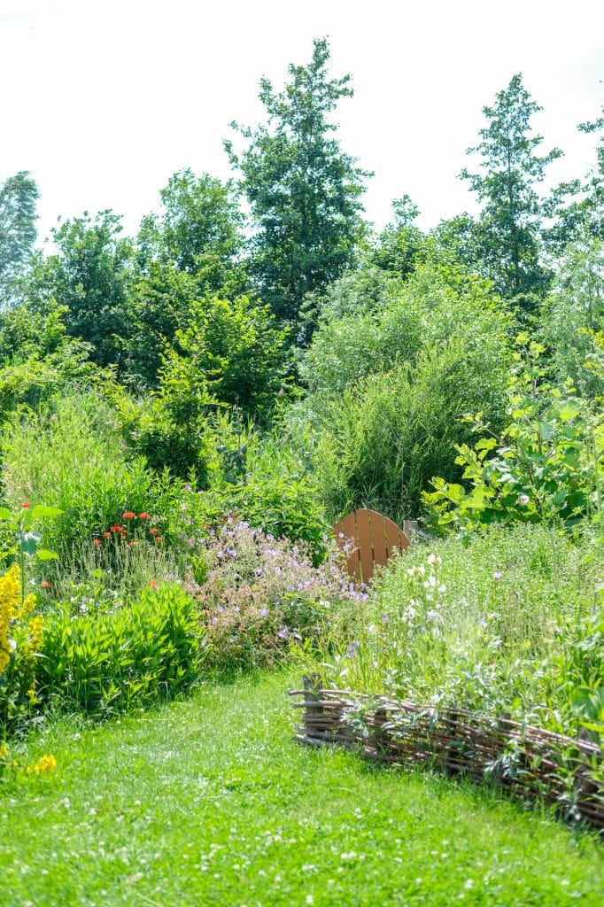 meer biodiversiteit in de tuin tips