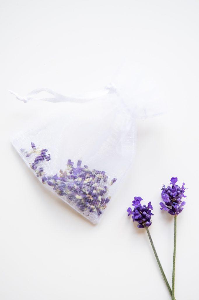 lavendel DIY