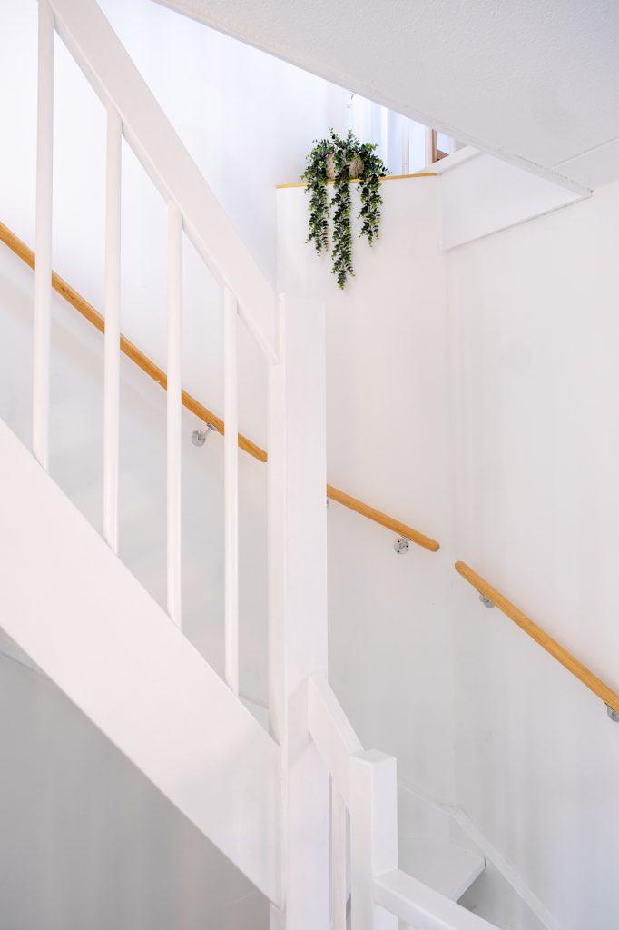 plant neerzetten bij de trap