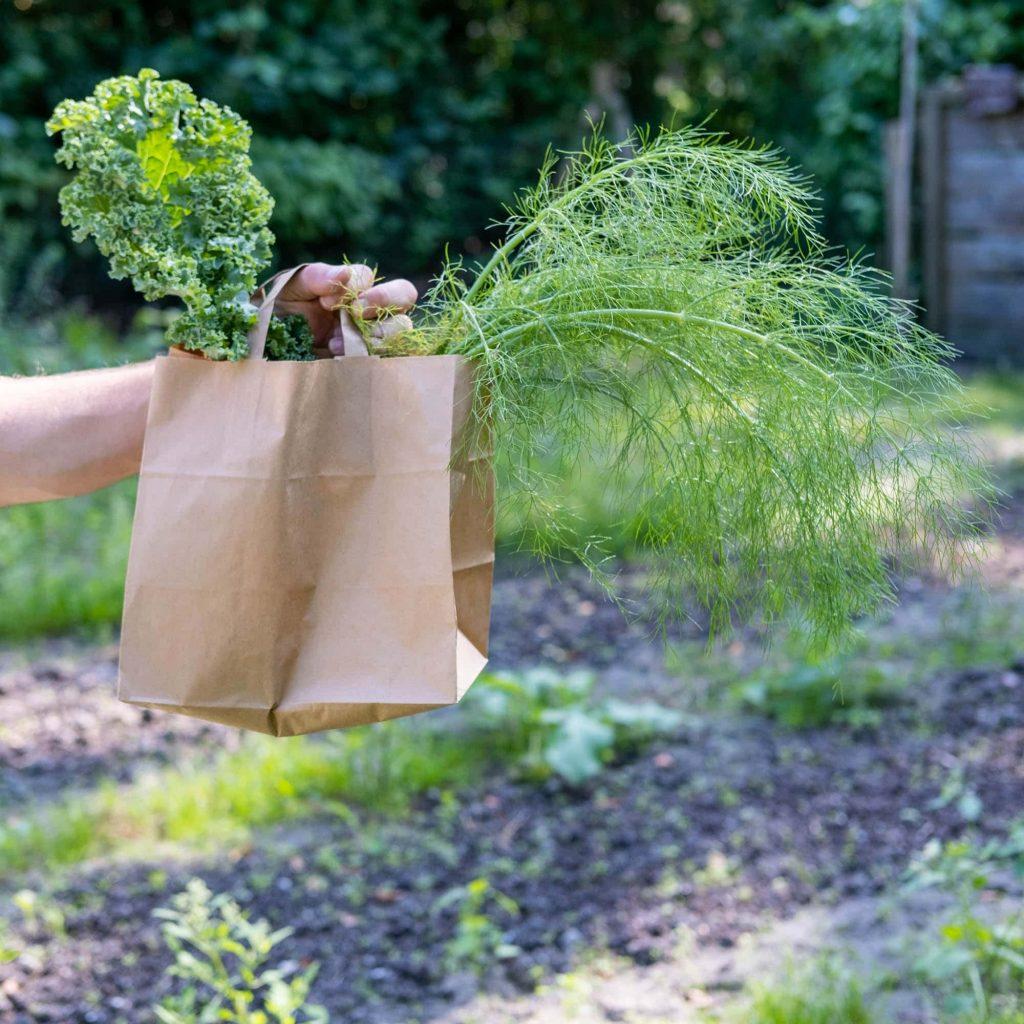 voordelen biodynamisch koken