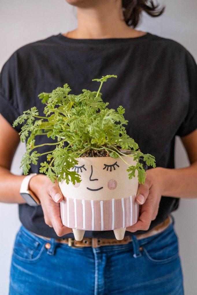 planten cadeau geven