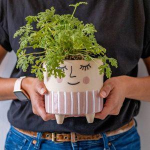 planten cadeau doen tips